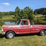 Woods Tree Farm